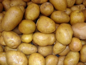 POTATOES ………. GOOD SOURCE OF VITAMIN M (MONEY)