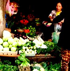 Vegetable Prices to Ease by January : Planning Commission